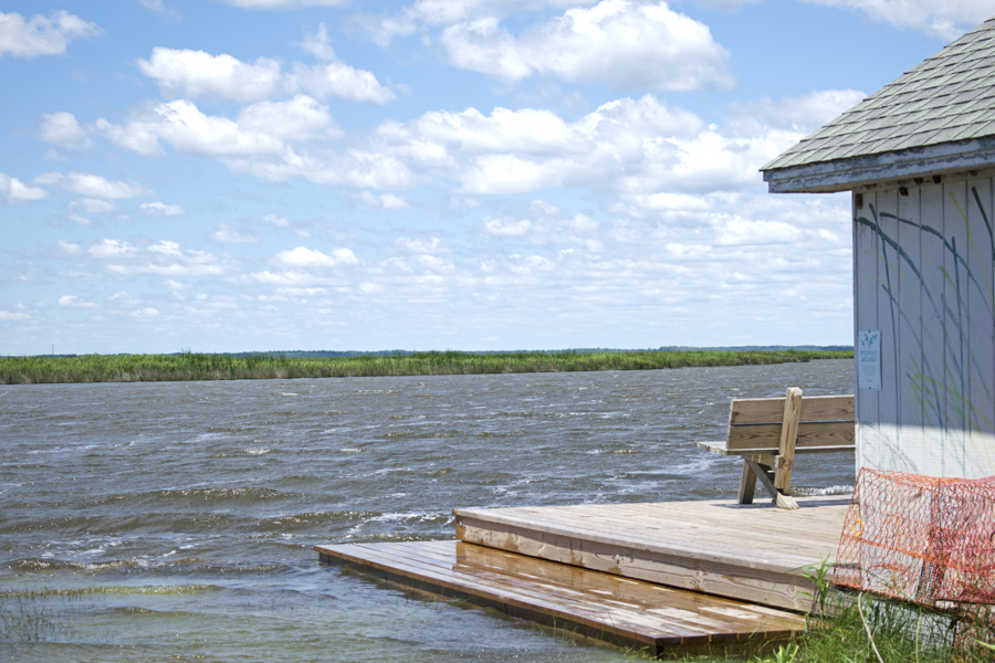 High waters of the Currituck Sound at the Audubon Sanctuary docks in Corolla.