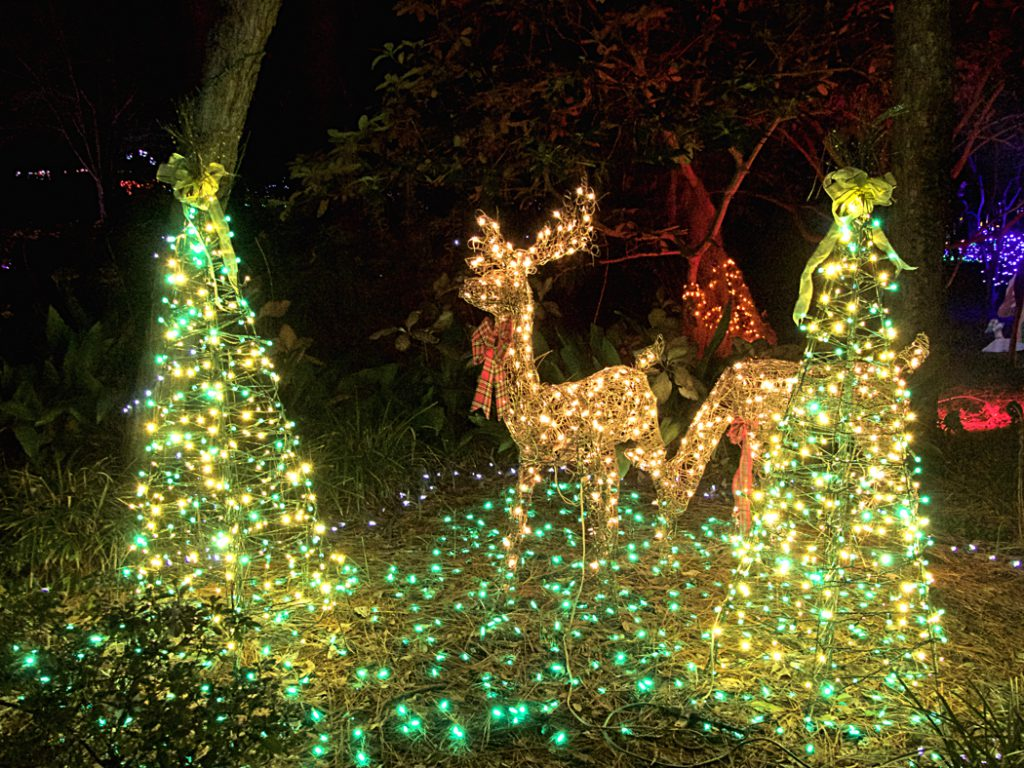 Winter Lights at the Elizabethan Gardens is a wonderful holiday event.