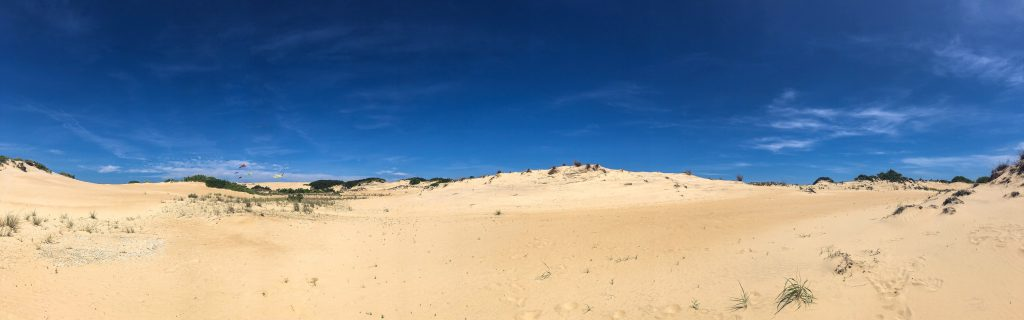 Explore Jockey's Ridge State Park on your next Outer Banks Vacation