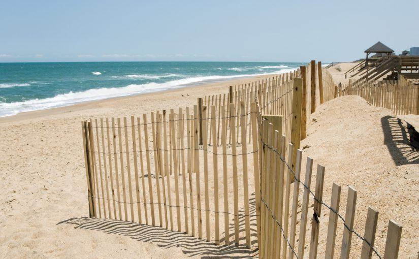 Eco-Tourism on the Outer Banks: How to Bring Eco-Tourism to your Vacation Rental & Home